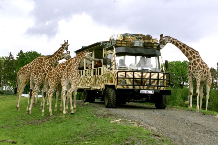 Serengeti-Park Hodenhagen – beliebtes Ausflugsziel in der Lüneburger Heide