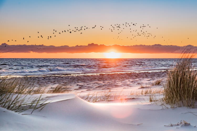 Ostsee – eine beliebte Urlaubsregion